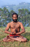 Indian man meditating on green grass Stock Photography