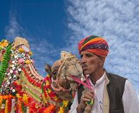 Indian man in national clothes kisses a camel during Camel festival in Rajasthan, India. BIKANER, INDIA - JANUARY 13, 2019: Indian man in national clothes kisses royalty free stock images
