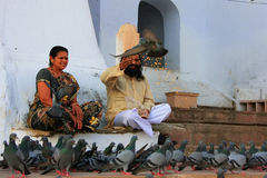 Indian man and woman feeding pigeons near holy lake, Pushkar, In Royalty Free Stock Photography