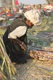 Indian man working on bamboo canes Royalty Free Stock Images