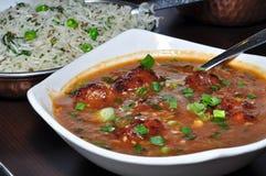 Indian manchurian. Indian vegeterian meal ,rice with manchurian Royalty Free Stock Photos