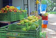 Indian Mango Sales Stock Photo