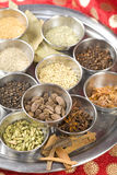 Indian masala spices Stock Images