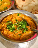 Indian Meal with Chicken korma. Indian meal consisting of chicken korma as the main dish, along with vegetable curry,Indian Bread,Rice and Salad Stock Image