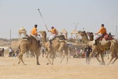 Indian men play camel polo at Desert Festival in Jaisalmer, Rajasthan, India. JAISALMER, INDIA - FEBRUARY 09, 2017 : Unidentified men play camel polo at Desert Stock Photo