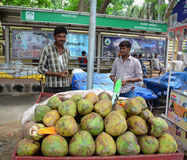 Indian men sell coconut fruits on street in Bodhgaya, India Royalty Free Stock Images