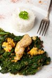 Indian murgh palak Royalty Free Stock Photo