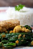 Indian murgh palak Royalty Free Stock Images