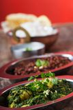 Indian murgh palak Stock Photo