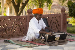 Indian musician in Jodhpur Stock Image