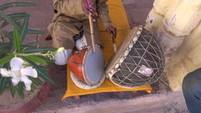 Indian musician playing with tabla drums in Jodhpur, Rajasthan, India stock footage