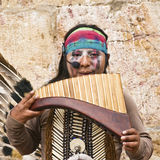Indian Musician Profile Stock Images