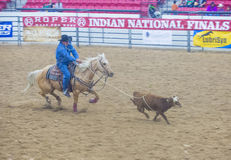 Indian national finals rodeo Royalty Free Stock Photos