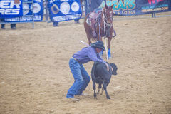 Indian national finals rodeo Royalty Free Stock Image