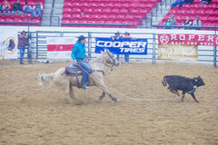 Indian national finals rodeo Stock Image