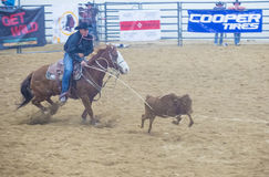 Indian national finals rodeo Royalty Free Stock Photo