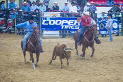 Indian national finals rodeo Royalty Free Stock Photography