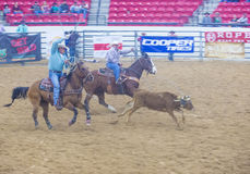 Indian national finals rodeo Stock Images