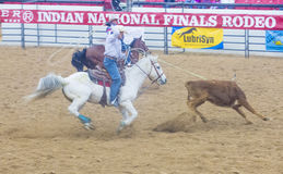 Indian national finals rodeo Stock Photo