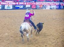 Indian national finals rodeo Stock Photos