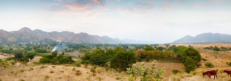 Indian nature. Panorama with mountains and goats Royalty Free Stock Photography