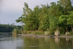 River Boat on Water, with another hidden Behind Bamboos royalty free stock photography