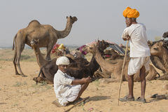 Indian nomad attended the annual Pushkar Camel Mela Royalty Free Stock Image