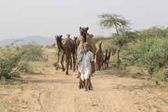 Indian nomad attended the annual Pushkar Camel Mela. PUSHKAR, INDIA - OCTOBER 26, 2014: Unidentified Indian man attended the annual Pushkar Camel Mela. This fair Royalty Free Stock Photography