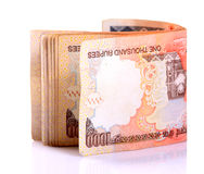 Indian notes Royalty Free Stock Images