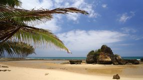 Indian Ocean Beach in Tanzania royalty free stock photography