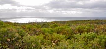 Indian Ocean Coast: Geographe Bay Stock Photography