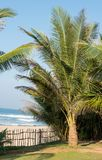 Indian Ocean coast Royalty Free Stock Photography
