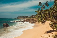 Indian Ocean Coast with stones and pandanus trees. Tropical vacation, holiday background. Wild deserted untouched beach. Paradise. Idyllic landscape. Travel Royalty Free Stock Photos