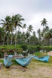 On the Indian ocean. Fishing boats on the island of Ceylon Royalty Free Stock Photo