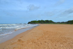 Indian ocean with golden sand, Bentota, Sri Lanka. A wonderful nature landscape of a beach scene. Royalty Free Stock Images
