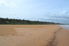 Indian ocean with golden sand, Bentota, Sri Lanka. A wonderful nature landscape of a beach scene. Stock Photos