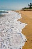 Indian Ocean's beach Stock Photos