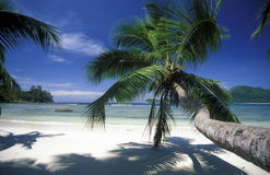 INDIAN OCEAN SEYCHELLES PRASLIN BEACH Stock Photos