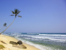 Indian ocean at thalpe Stock Images