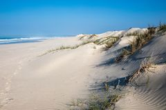 Indian Ocean view in the De Mond coastal nature reserve, South Africa stock image