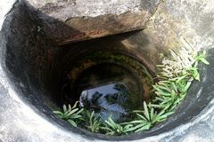 Indian old concrete pit with reflection of palm fronds. Indian old concrete pit (ground water catchment, water well) with reflection of palm fronds ( thack stock photos