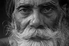 INDIAN OLD FARMER. A close up of an Indian old man looking towards camera Royalty Free Stock Images