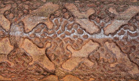 Indian old metal work texture Stock Image