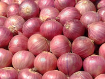 Indian Onion Abstract Stock Photos