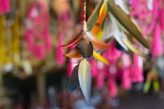 Indian ornament, pink, beautiful, feathers, stock photos