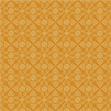 Indian paisley background Stock Image