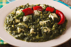 Indian Palak paneer in spicy spinach with cheese close-up. horiz Stock Images