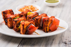 Indian paneer barbecue or tikka. Paneer Tikka Kabab - Tandoori Indian cheese skewers, malai paneer tikka / malai paneer kabab, chilli paneer served in white Royalty Free Stock Images
