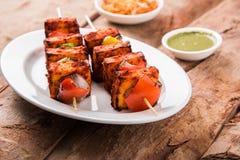 Indian paneer barbecue or tikka. Paneer Tikka Kabab - Tandoori Indian cheese skewers, malai paneer tikka / malai paneer kabab, chilli paneer served in white Royalty Free Stock Photography