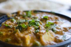 Indian paneer curry dinner topped with green leaves with rice in Royalty Free Stock Image
